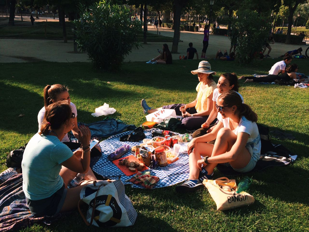 Best Picnic Food For Concert In The Park